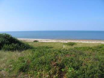 Bayside Wellfleet Cape Cod Vacation Rental - The Rental Company