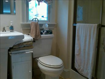 1st floor bath with shower