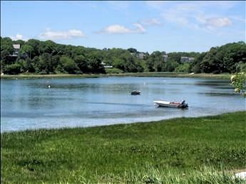 Beautiful Mill pond