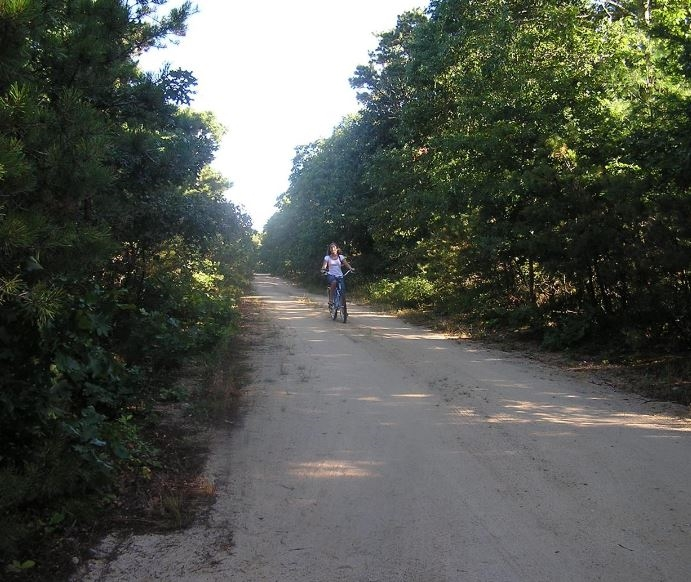 50 Hoyer - Quiet Road