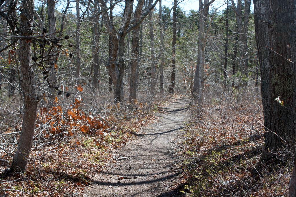 Bike Trail Path