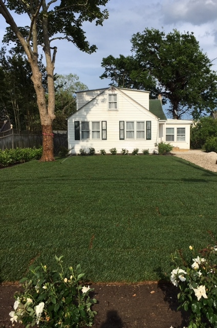 123 Broadway, West Cape May - Picture 1