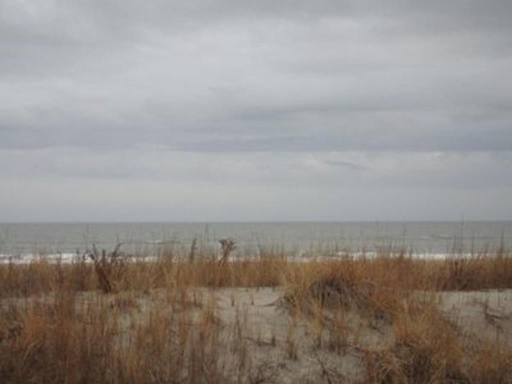 7505 Pleasure, Sea Isle City - Picture 15