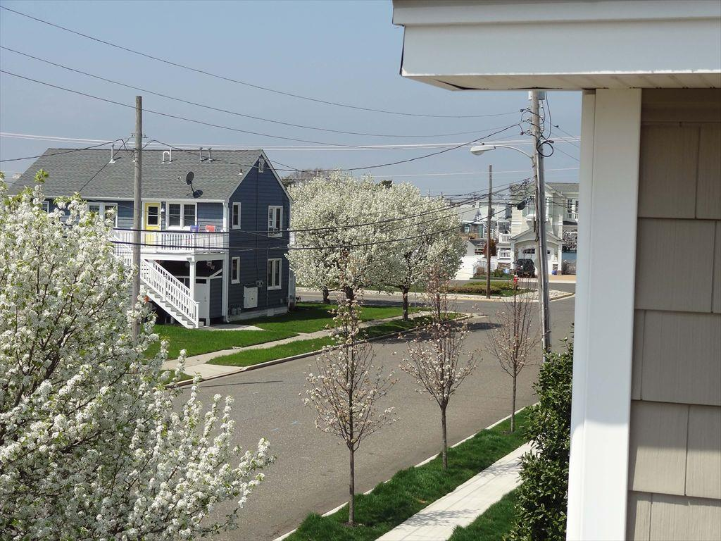 262 103rd Street, Stone Harbor (Island) - Picture 24