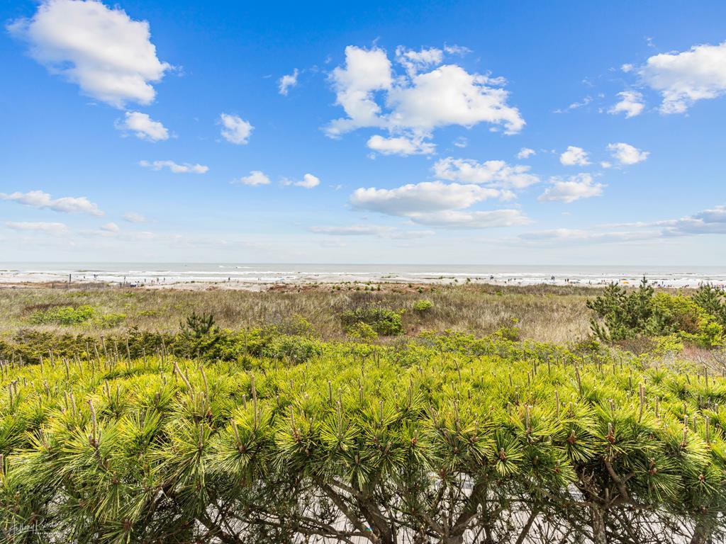 65 E 28th Street North, Avalon (Beach Front) - Picture 19