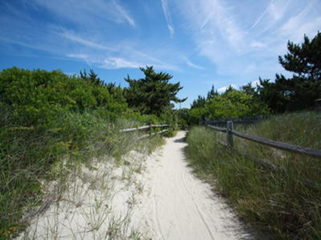 313 Harvard Avenue, Cape May Point (Cape May Point) - Picture 24