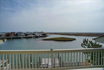 113 Pelican Drive, Avalon (Bayfront)