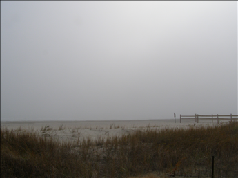 9 84th Street, Sea Isle City (Beach Front) - Picture 4