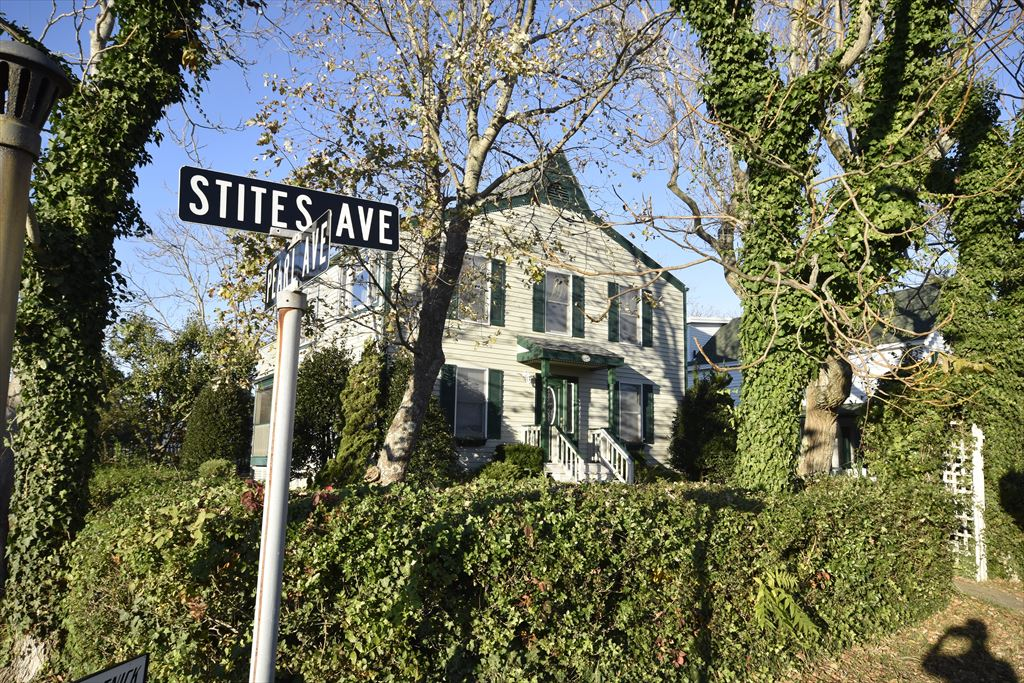 300 Stites Avenue, Cape May Point - Picture 1
