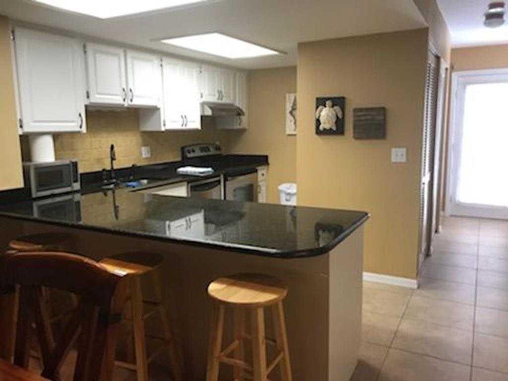 4764 S Atlantic Ave Ponce Inlet Fl 32127   Photo 14